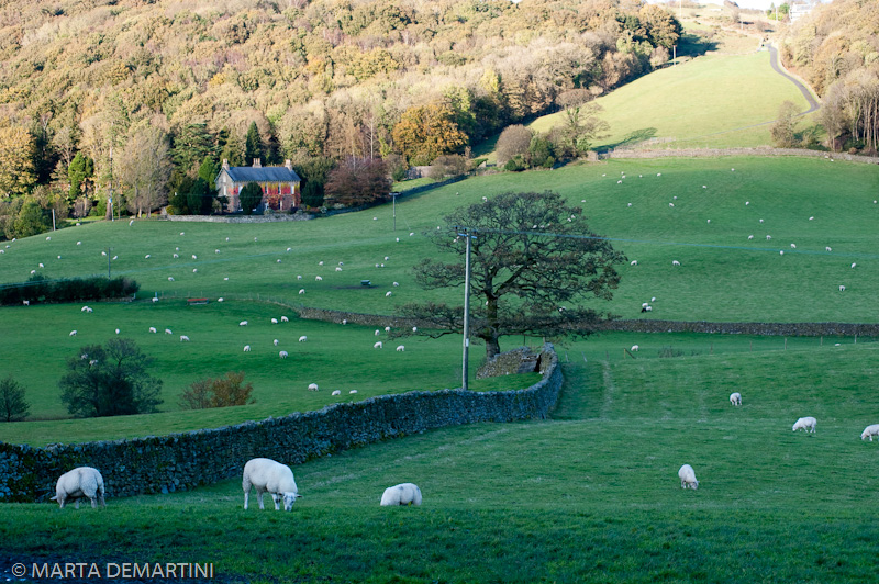 Southern Lake District Landscape UK