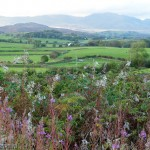 Southern Lake District Landscape